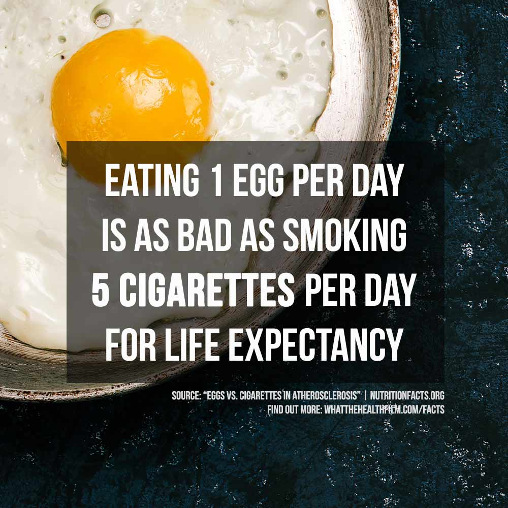 Eating 1 egg per day is as bad as smoking 5 cigarettes per day for life expectancy.