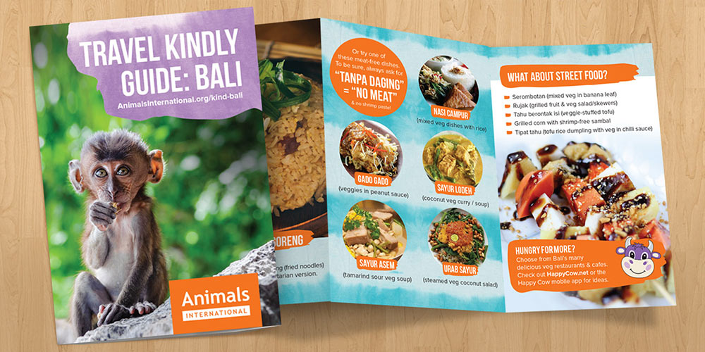Order your free Bali kind travel guide