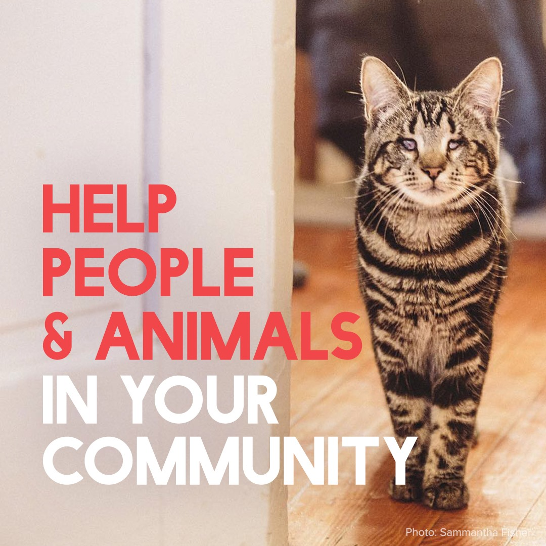 help-people-and-animals-in-your-communit