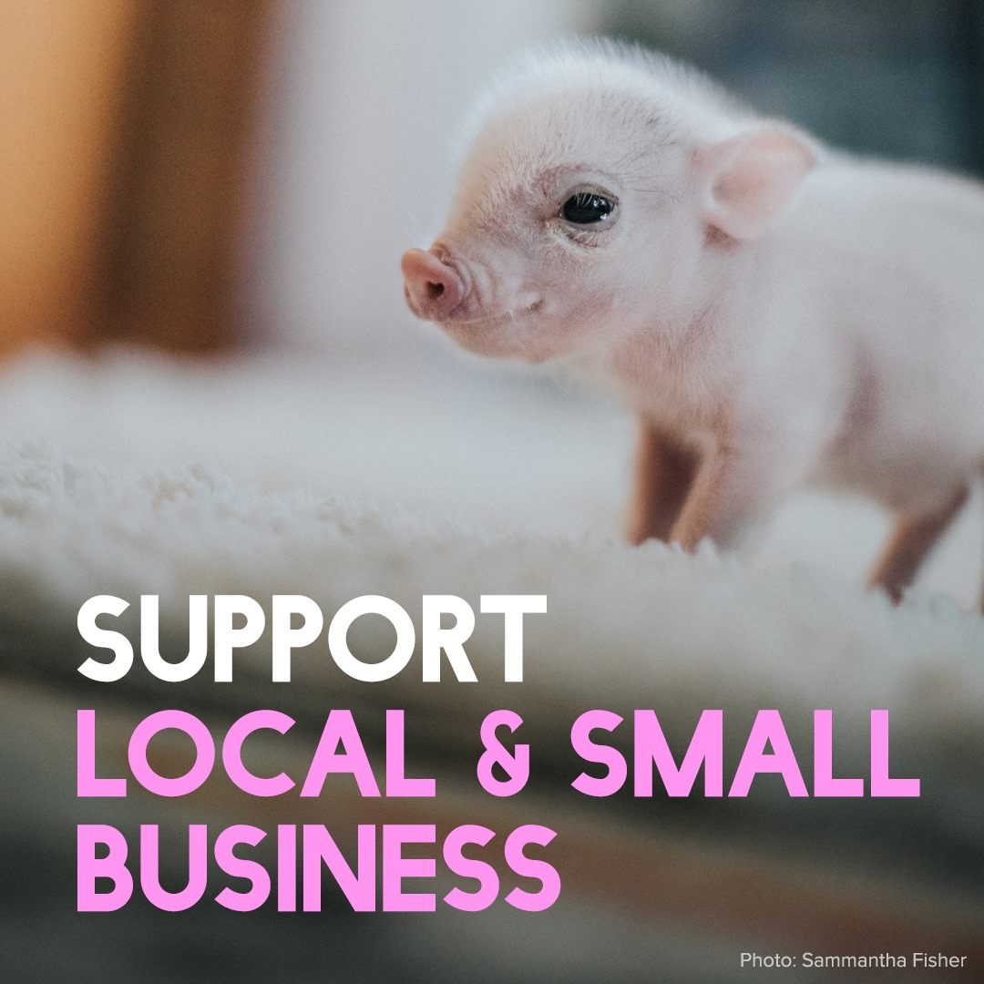 support-local-small-business.jpg