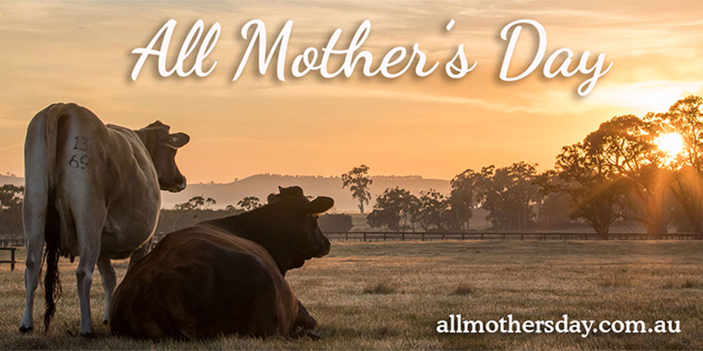 Click here to pledge to have a kind Mother's Day for all mothers