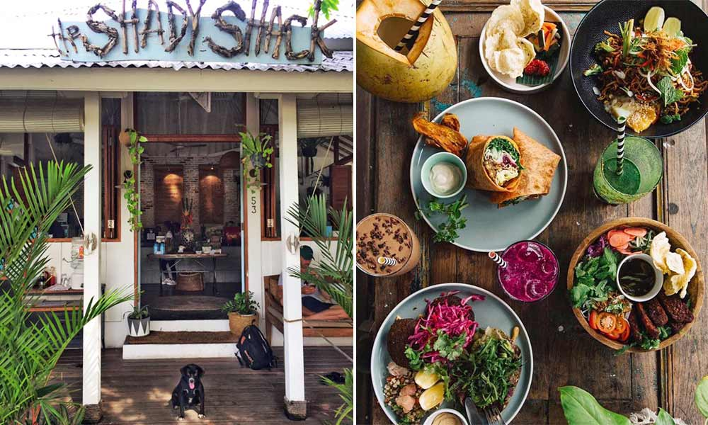 The Shady Shack, Canggu